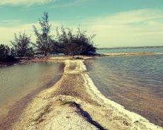 Defeso da Lagoa de Araruama começou neste sábado e vai até 31 de outubro